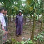Bàn giải pháp hỗ trợ-khôi phục sản xuất nông nghiệp sau mưa lũ